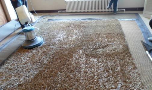 地毯山猫足球直播网站